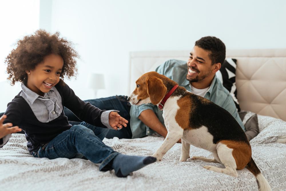 como o pai pode ajudar com a amamentação