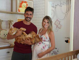 gravidez-e-gatos